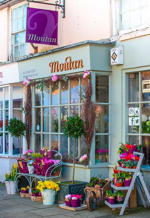moutan-shops1