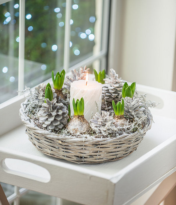 Planted Bulb Ring